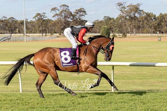 Toodyay Cup Day.