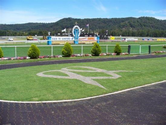The Stable Heads To Gosford Today with Jessie's Surprise