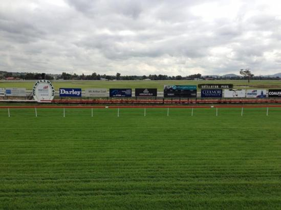 Miello To Contest At Muswellbrook