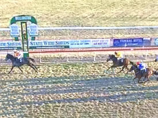 Attitude Pays Finds The Line At Wellington To Land Third Prize