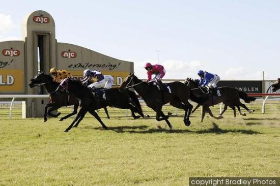 Nissile To Contest At Canterbury