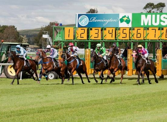 Barstow To Compete At Muswellbrook On Tuesday