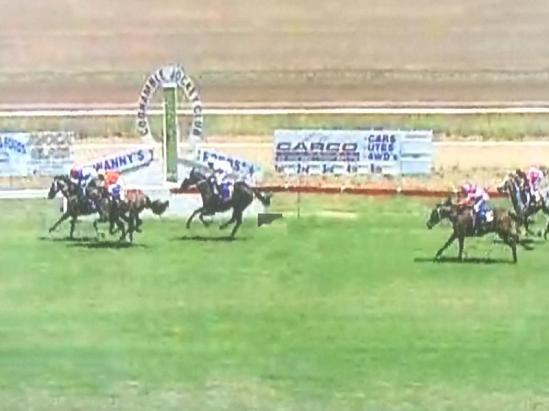 Attitude Pays Takes Out Race 1 On Coonamble Cup Day