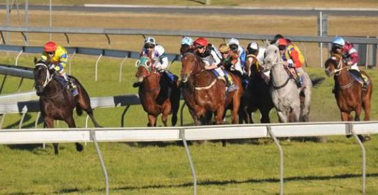 The Stable To Compete At Taree On Monday
