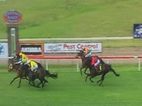 Nissile Much Improved At Kempsey