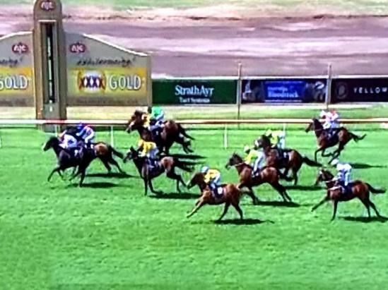 Nissile Land Third Prize At Newcastle