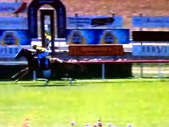 Strong win By Pirate Ben At Armidale To Score By 5.0 Lengths