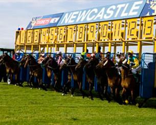 Two First Starters For The Stable At Newcastle