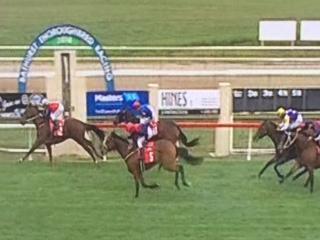 Lucky Cash runs 3rd At Bathurst
