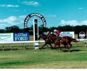 Stable Runners For Parkes On Sunday