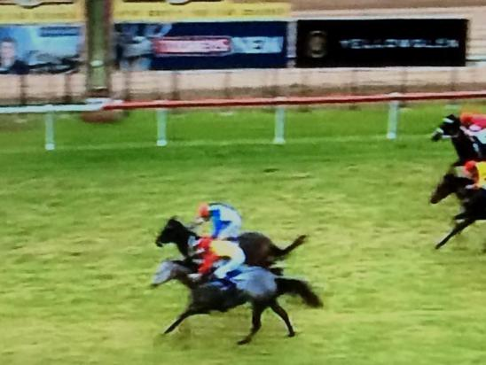 Lucky Cash Comes Close To Breaking The Duck At Cessnock
