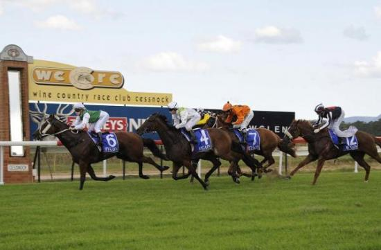 Two Stable Runners To Compete At Cessnock On Monday