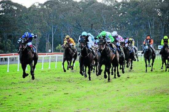 The Stable Heads To Taree With 2 Runners