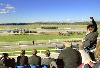 Big Day Out For the stable At Wyong