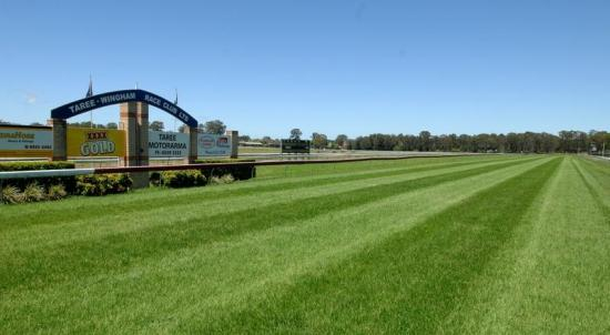 Taree Stable Runners For Sunday