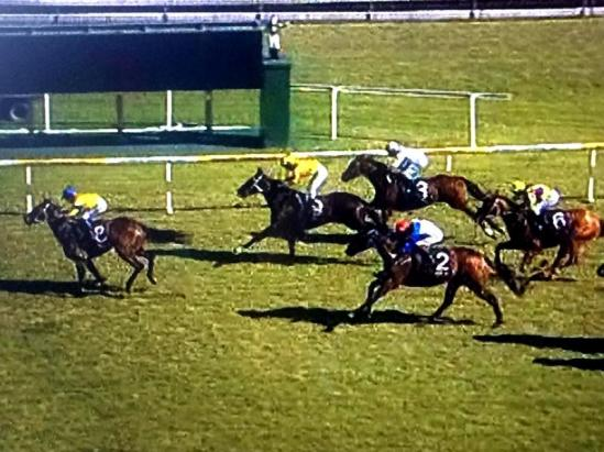 Lucky Cash Lands The Bronze At Gosford