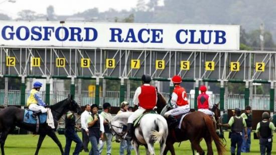 Lucky Cash To Compete At Gosford On Thursday