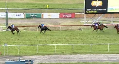 Bella Sublime Finishes Off Strongly To Run 3rd At Newcastle