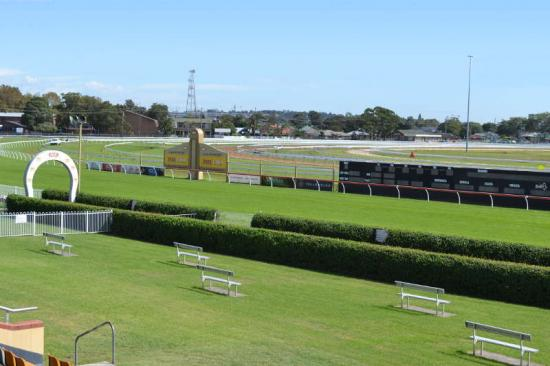 Damien Lane Runners For Newcastle On Saturday