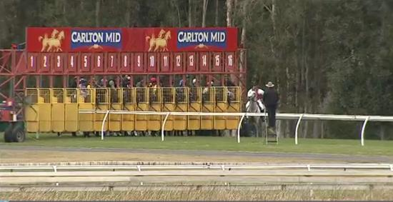 Two Stable Runners To Compete At Wyong On Tuesday
