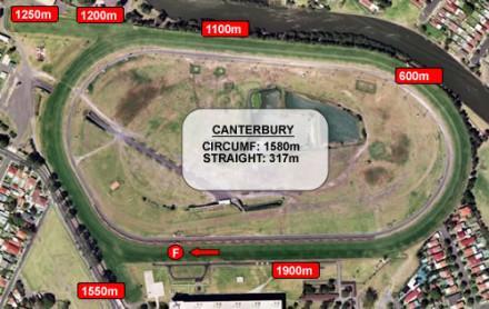 Helensburgh Ham To Run At Canterbury On Saturday