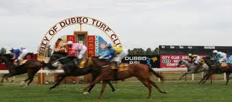 Stable Runners For The Dubbo Meeting On Tuesday