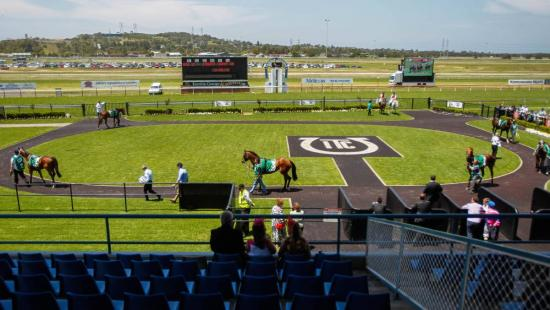 Spinning Gold To Compete At Kembla Grange On Tuesday
