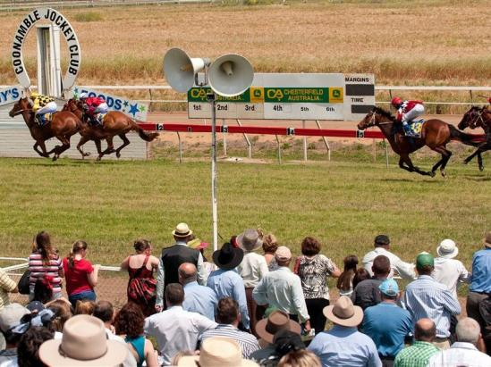 The Stable To Supply A Team Of Runners To The Coonamble Meeting