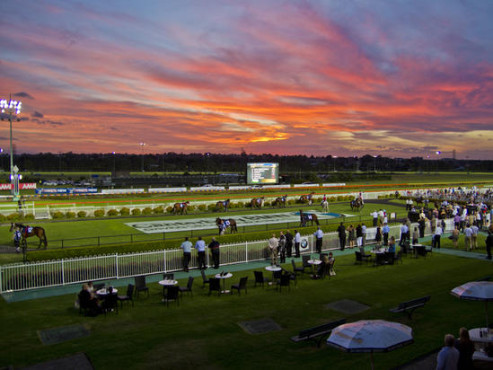 Stable Runners For Canterbury, This Evening