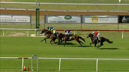 Kanguru Improves To Run A Nice Third At Newcastle