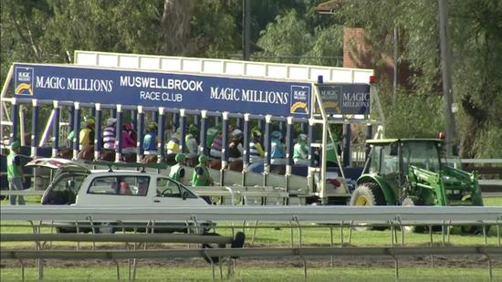 Stable Runners To Compete At Muswellbrook On Tuesday