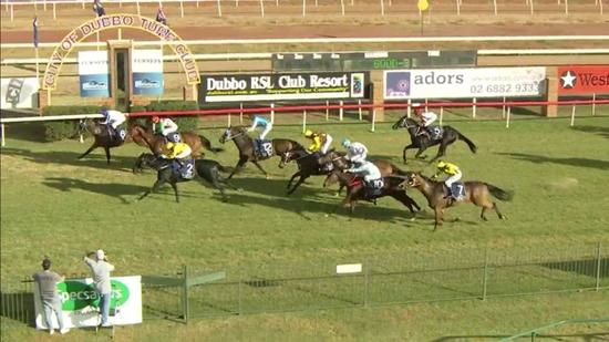 Spinning Gold Runs A Nice Third At Dubbo On Sunday