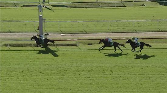 Bend It Like Benny Runs 2nd At Newcastle