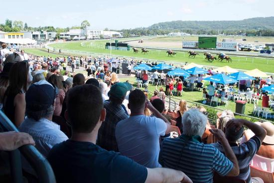Stable Runners To Compete At Gosford On Thursday