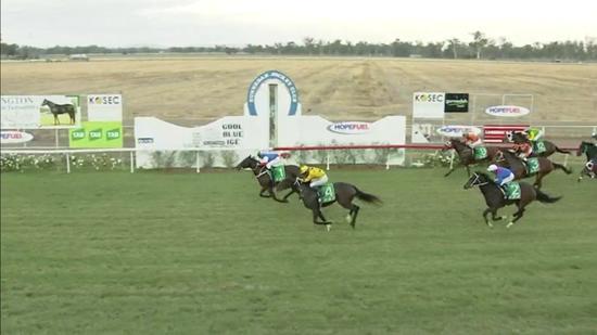 Moysation Runs A Nice 2nd At Big Odds At Gunnedah