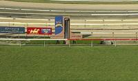 The Stable Gears Up For Racing At Wyong On Sunday
