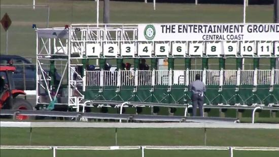 Stable Runners To Compete At Gosford On Friday