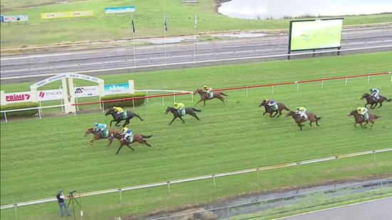 Spinning Gold Dead-Heats For Second At Taree