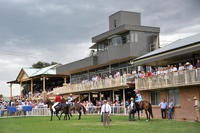 Two Stable Runners To Compete At Quirindi On Monday
