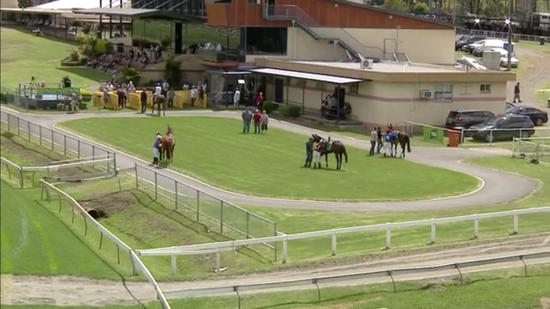 The Team Saddles Up For Racing At Taree On Monday