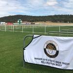 Damien Lane Runners For Wellington On Sunday