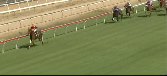 Captains Legend Runs Into Second At Wyong