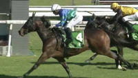 Rubikat Puts In A Solid Provincial Performance Under Jason Collett
