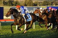 All But Gone To Run On Kembla's Big Day