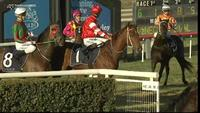 Tokyo Bullet Fires A Shot When Storming Home For Third At Scone