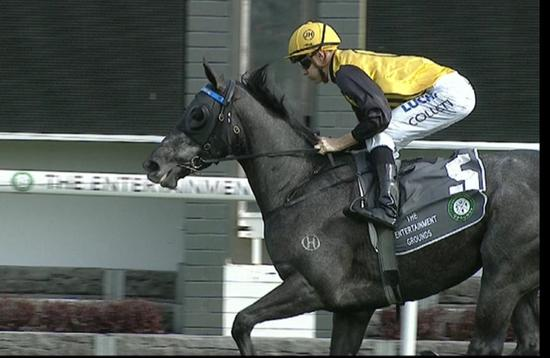 Lavish Rose Far To Strong For Her Rivals On Tuesday