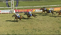 Captain's Legend Finishes As The Runner Up After Race 3 On The Tamworth Card.