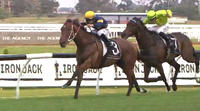 Oakfield Twilight Finishes 2nd At Rosehill On Saturday