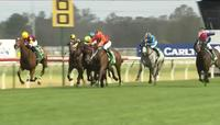 All But Gone Puts In A Solid Late Finish