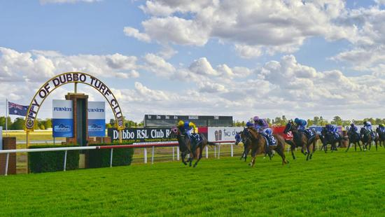 The Lane Stable Supports Racing At Dubbo On Sunday